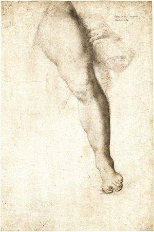 agnolo-bronzino-study-of-a-leg-and-drapery