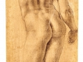 agnolo-bronzino-standing-nude-seen-from-the-rear