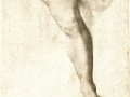 agnolo-bronzino-study-of-a-leg-and-drapery