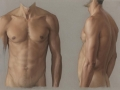 Claudio-Bravo-Male-Torso